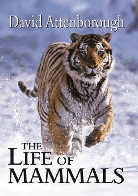 The Life of Mammals By Attenborough, David